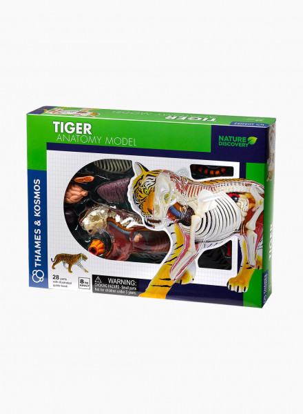 "Educational game ""Animal anatomy: tiger"""
